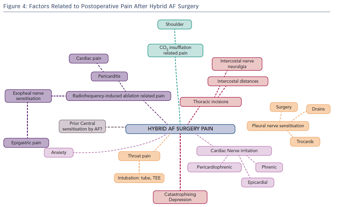 Postoperative Pain after Hybrid AF Surgery