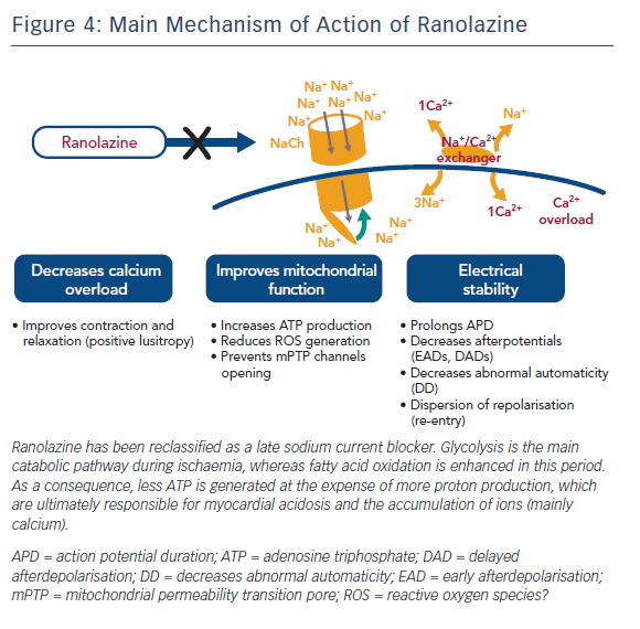 Main Mechanism of Action of Ranolazine