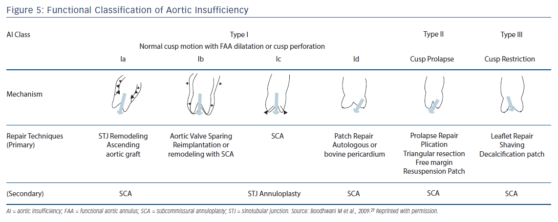 Figure 5: Functional Classification of Aortic Insufficiency