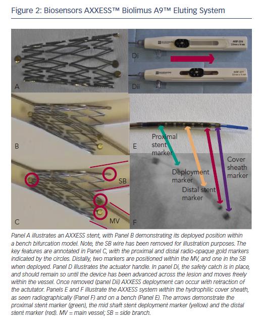 Figure 2: Biosensors AXXESS™ Biolimus A9™ Eluting System