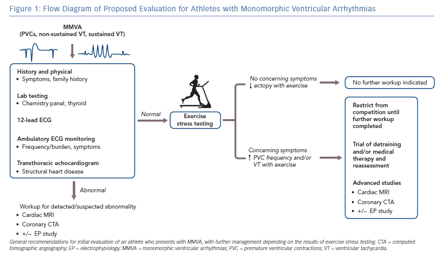 Flow Diagram of Proposed Evaluation for Athletes with Monomorphic Ventricular Arrhythmias