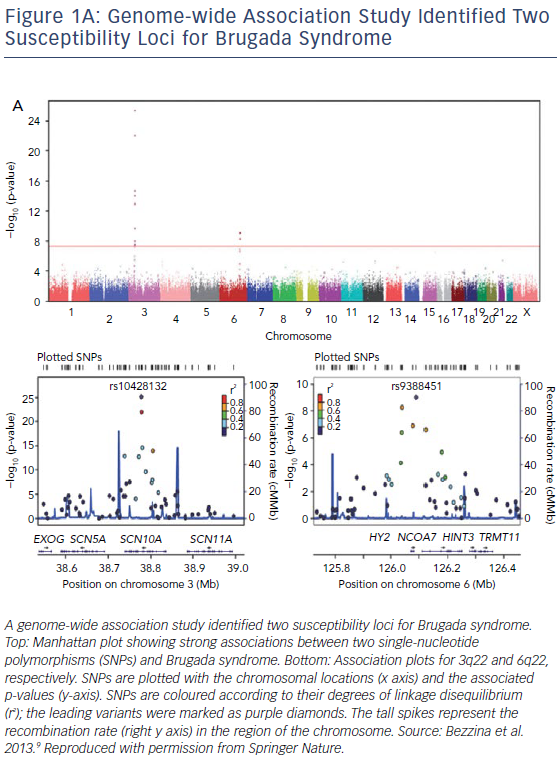 Genome-Wide Association Study Identified Two Susceptibility Loci
