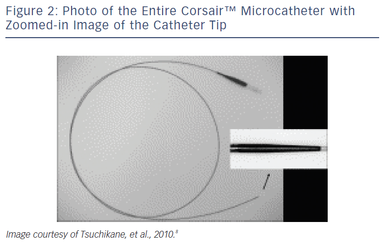 Photo Of The Entire Corsair™ Microcatheter
