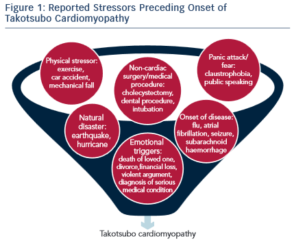 Reported Stressors Preceding Onset of Takotsubo Cardiomyopathy