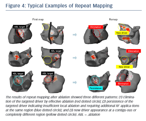 Figure 4: Typical Examples of Repeat Mapping