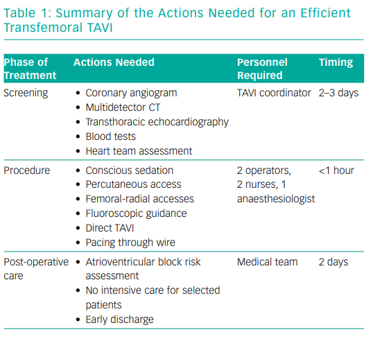 Summary of the Actions Needed for an Efficient Transfemoral TAVI