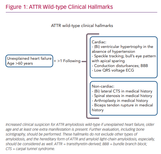 ATTR Wild-type Clinical Hallmarks