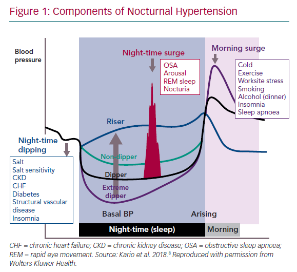 Components of Nocturnal Hypertension
