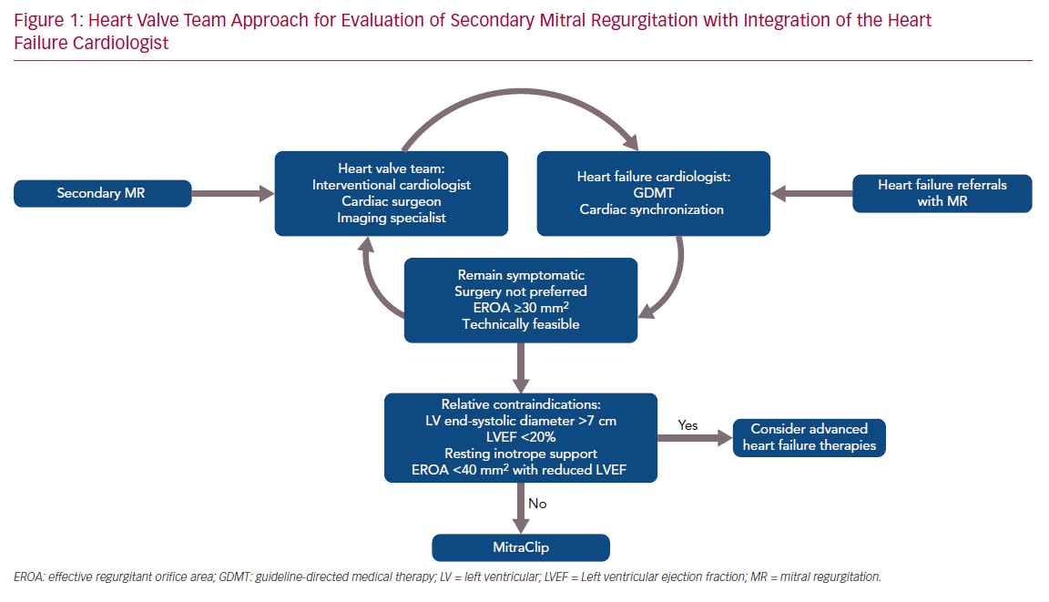 Heart Valve Team Approach for Evaluation