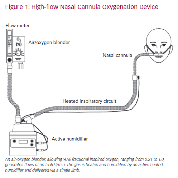 High-flow Nasal Cannula Oxygenation Device