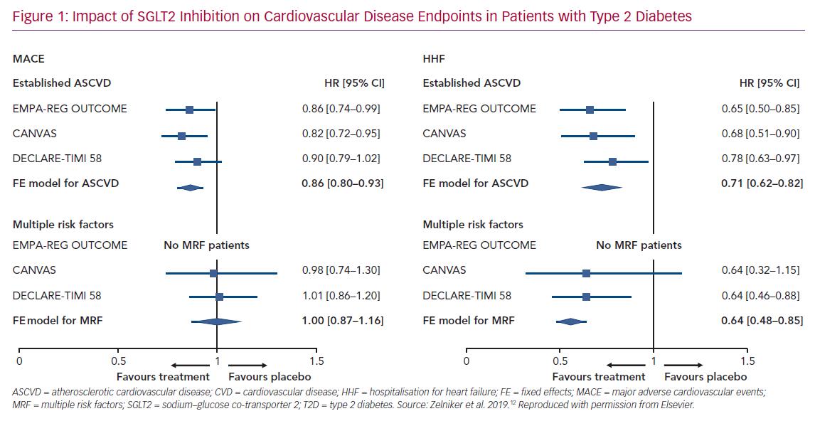 Impact of SGLT2 Inhibition on Cardiovascular Disease