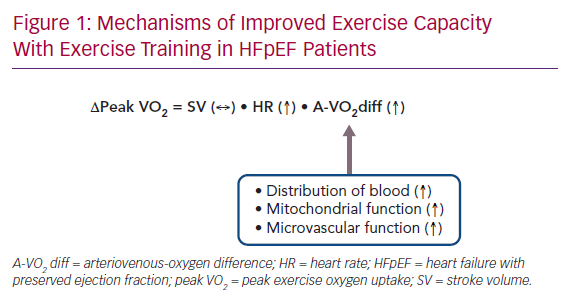 Mechanisms of Improved Exercise Capacity With Exercise Training in HFpEF Patients