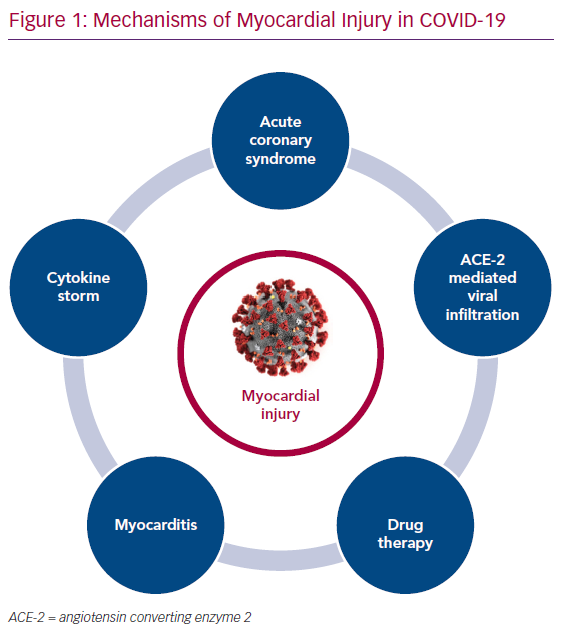 Mechanisms of Myocardial Injury in COVID-19