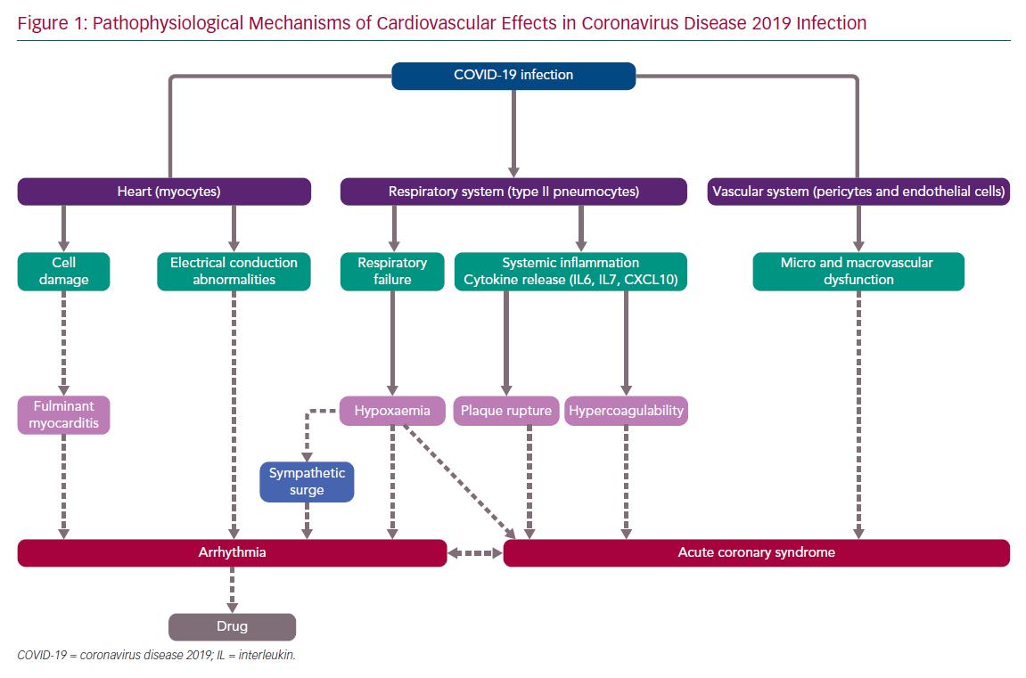 Pathophysiological Mechanisms of Cardiovascular Effects