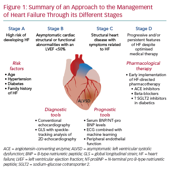 Summary of an Approach to the Management of Heart Failure Through its Different Stages