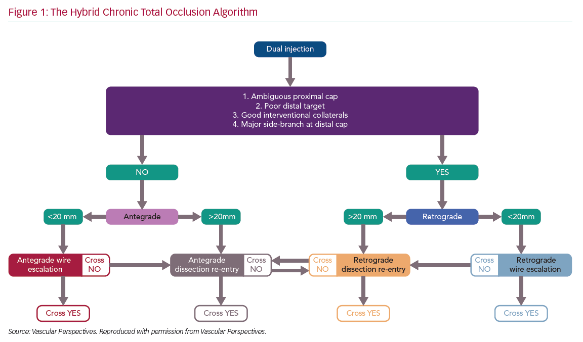 The Hybrid Chronic Total Occlusion Algorithm
