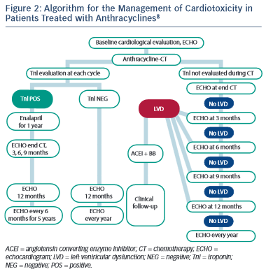 Algorithm for the Management of Cardiotoxicity in Patients Treated with Anthracyclines8