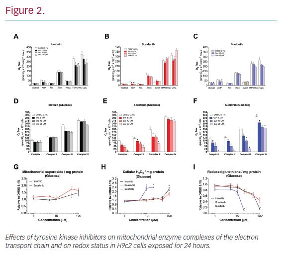 Mechanisms of Cardiotoxicity Associated