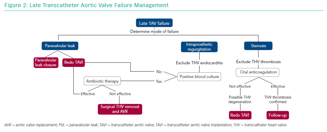 Late Transcatheter Aortic Valve Failure Management