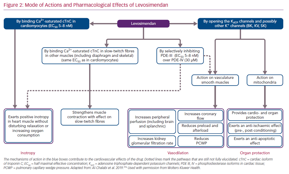 Mode of Actions and Pharmacological Effects of Levosimendan