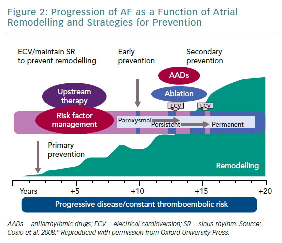 Progression of AF as a Function of Atrial Remodelling and Strategies for Prevention