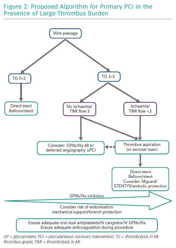 Proposed Algorithm for Primary PCI in the Presence of Large Thrombus Burden
