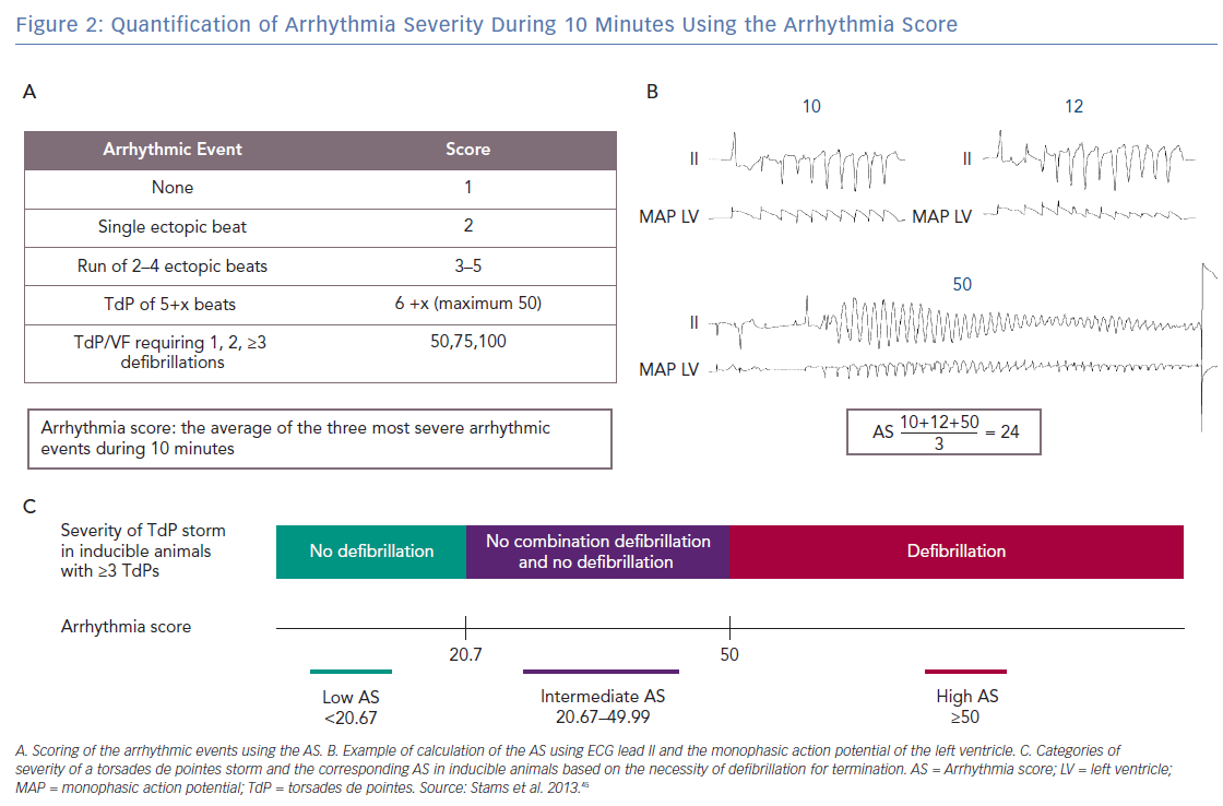 Quantification of Arrhythmia Severity During 10 Minutes Using the Arrhythmia Score