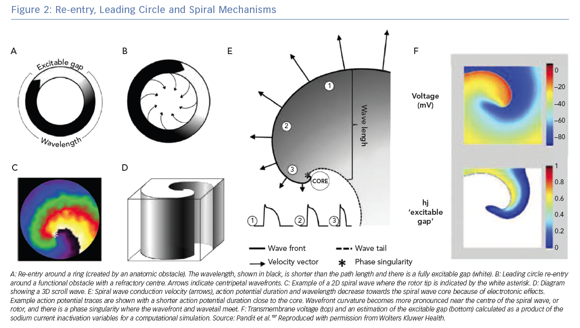 Re-entry, Leading Circle and Spiral Mechanisms