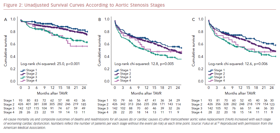 Unadjusted Survival Curves According to Aortic Stenosis Stages