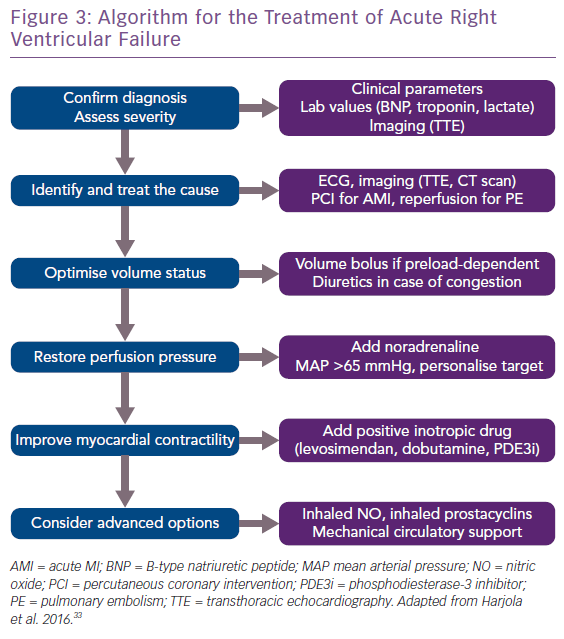 Algorithm for the Treatment of Acute Right Ventricular Failure