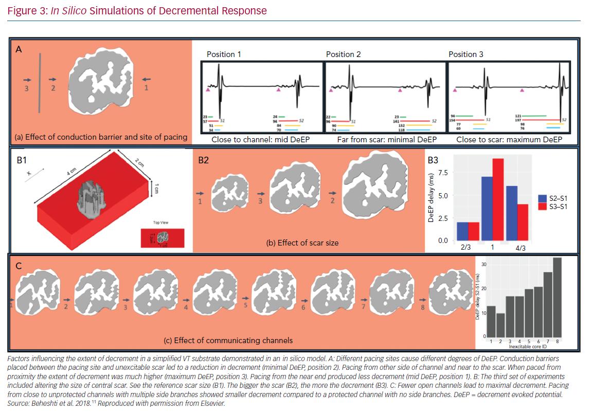 In Silico Simulations of Decremental Response