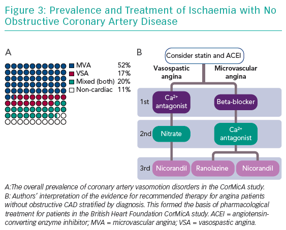Prevalence and Treatment of Ischaemia