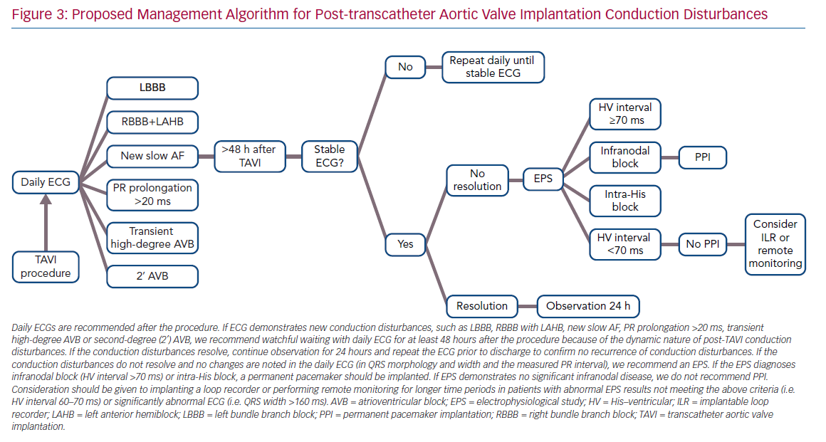 Proposed Management Algorithm