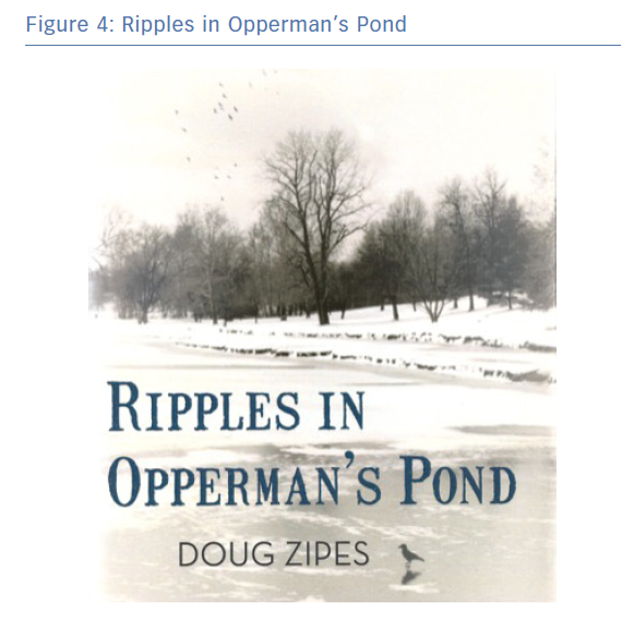 Ripples in Opperman's Pond
