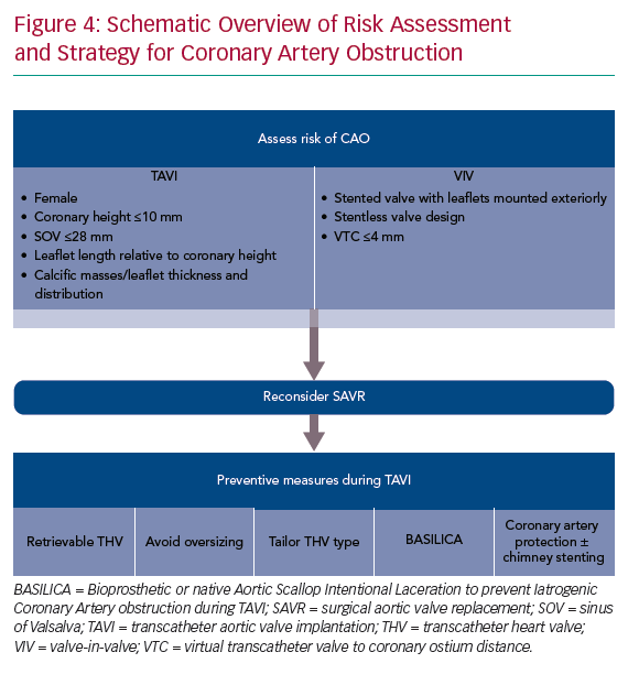 Schematic Overview of Risk Assessment and Strategy