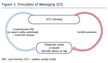 Principles of Managing SCD