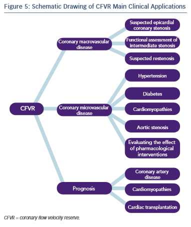 Schematic Drawing of CFVR Main Clinical Applications