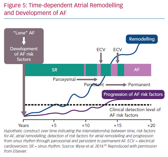 Time-dependent Atrial Remodelling