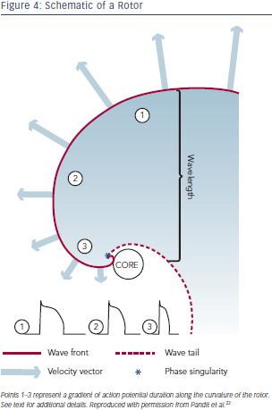Schematic of a Rot