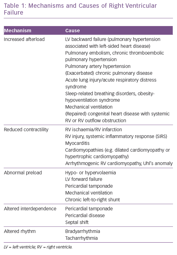 Mechanisms and Causes of Right Ventricular Failure