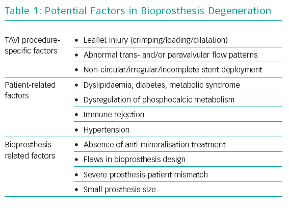 Potential Factors in Bioprosthesis Degeneration