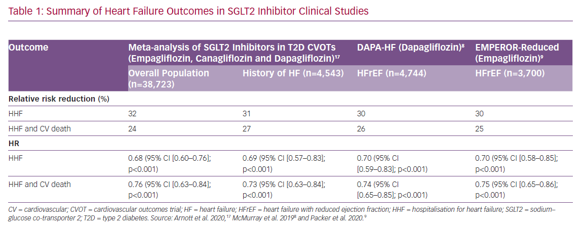 Summary of Heart Failure Outcomes in SGLT2 Inhibitor Clinical Studies
