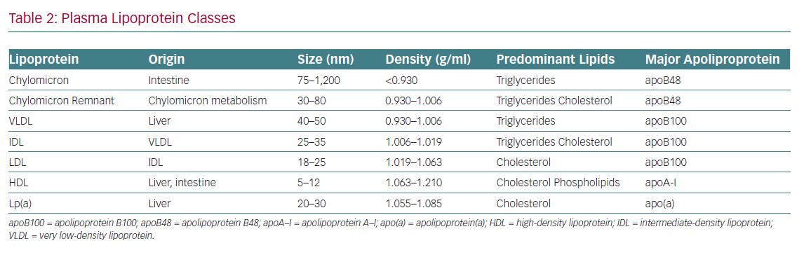 Plasma Lipoprotein Classes