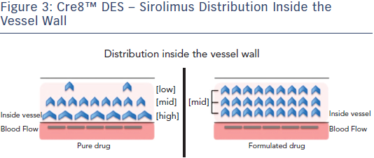 Cre8™ DES – Sirolimus Distribution Inside the Vessel Wall