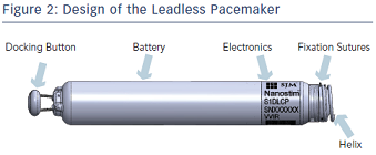 Design of the Leadless Pacemaker