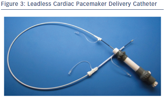 Leadless Cardiac Pacemaker Delivery Catheter