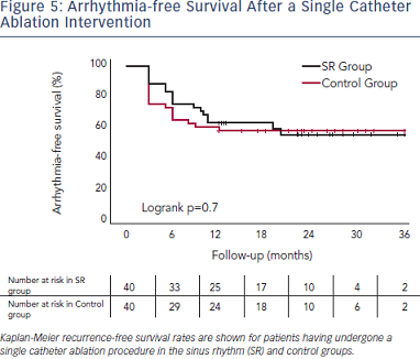 Arrhythmia - free survival after a single catheter ablation intervention