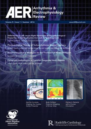 AER - Volume 5 Issue 1 Summer 2016