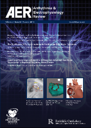 AER - Volume 5 Issue 2 Autumn 2016