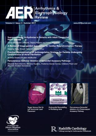 AER - Volume 6 Issue 2 Summer 2017